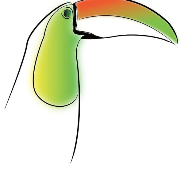 KewlActiveMinds Pura Vida Toucan Canvas Art