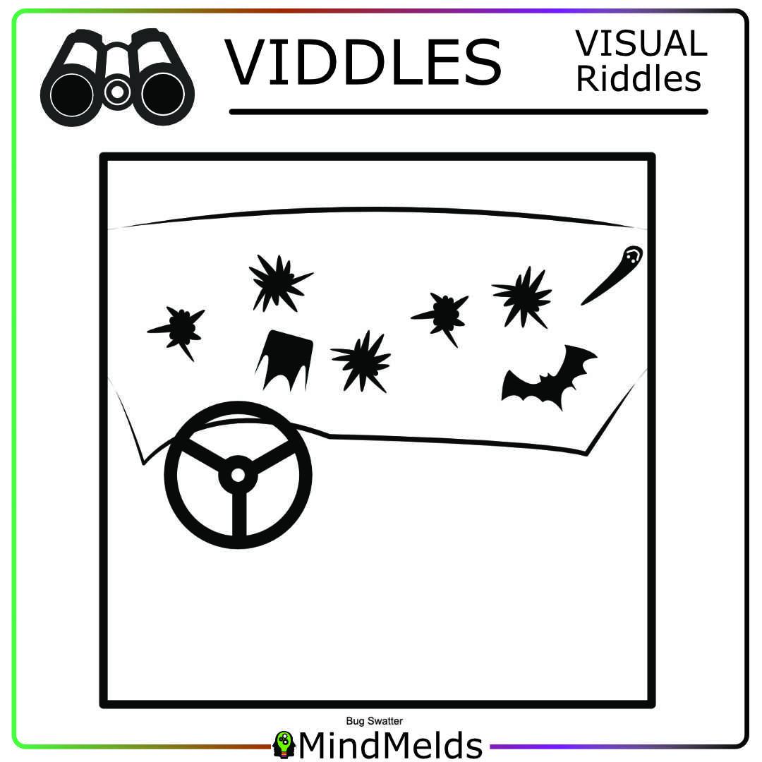 KewlActiveMinds Mindmelds - Viddle Visual Puzzle Brainteaser