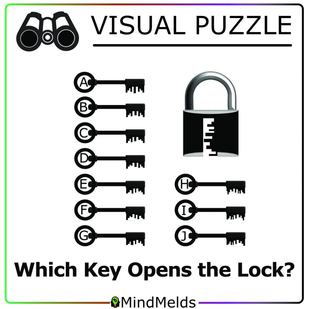 KewlActiveMinds Mindmelds - Visual Puzzle Brainteaser Brain Game