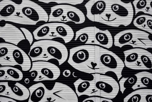 KwewlActiveMinds Wall Art