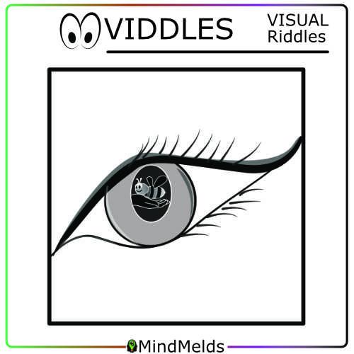 Viddles Visual Puzzle Mindmelds Kewlactiveminds Brainteaser